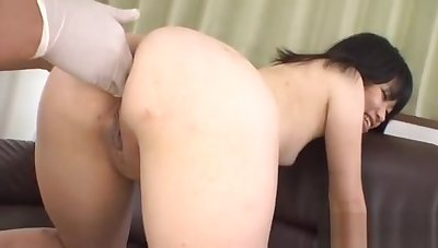 Threesome with regard to cute Asian pet related